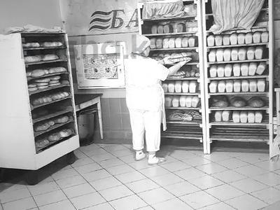Магазин площадью 837 м², Карасай батыра 1А за 155 млн 〒 в Нур-Султане (Астана), Сарыаркинский р-н — фото 26