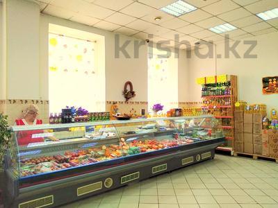 Магазин площадью 837 м², Карасай батыра 1А за 155 млн 〒 в Нур-Султане (Астана), Сарыаркинский р-н — фото 5
