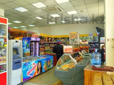 Магазин площадью 837 м², Карасай батыра 1А за 155 млн 〒 в Нур-Султане (Астана), Сарыаркинский р-н — фото 9