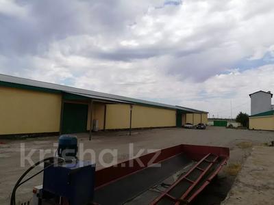 Склад продовольственный 6 га, Заводская за 535 млн 〒 в Жетыгене — фото 9