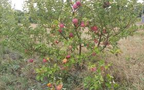 Сад в Тургене с домом за 100 млн 〒