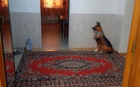 3-комнатная квартира, 87.8 м², Морозова 36 — Р.н вокзала за 20 млн 〒 в Щучинске