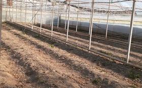 Теплица за 2.2 млн 〒 в Сарыагаш