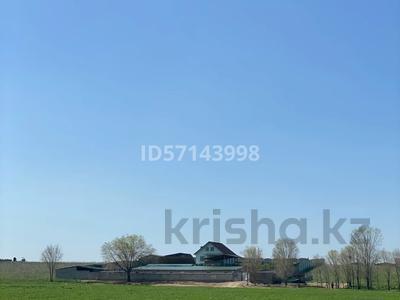 Дом с хозяйством мини ферма на 200 голов за 37 млн 〒 в в селе Шамалган — фото 7