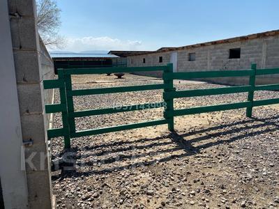 Дом с хозяйством мини ферма на 200 голов за 37 млн 〒 в в селе Шамалган — фото 15