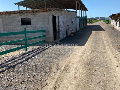 Дом с хозяйством мини ферма на 200 голов за 37 млн 〒 в в селе Шамалган — фото 17