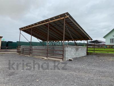 Дом с хозяйством мини ферма на 200 голов за 37 млн 〒 в в селе Шамалган — фото 19