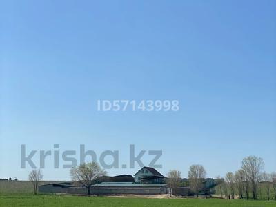 Дом с хозяйством мини ферма на 200 голов за 37 млн 〒 в в селе Шамалган