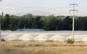 Производственная теплица за 500 млн 〒 в Аксукенте