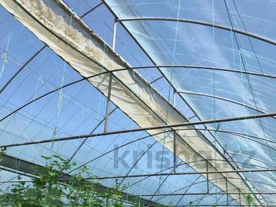 теплица за 150 млн 〒 в Шымкенте, Каратауский р-н — фото 5