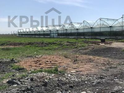 теплица за 150 млн 〒 в Шымкенте, Каратауский р-н — фото 7