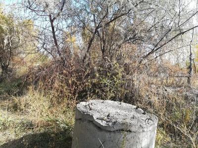 Склад продовольственный 0.986 га, Абдикеримова 48а за ~ 10.3 млн 〒 в Шелек — фото 20