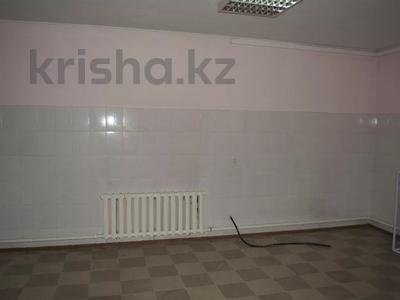 Склад продовольственный 0.2 га, Сырым Батыра 11 за 800 000 〒 в Нур-Султане (Астана), Есиль р-н — фото 5