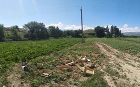 Действующий грибной бизнес за 33 млн 〒 в Каскелене