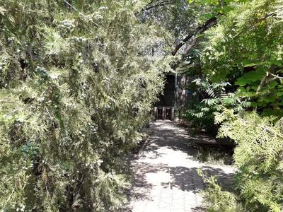 База отдыха, пансионат, зона отдыха, лагерь, райская идиллия, на северном побережье Капчигайского водохранилища за 234 млн 〒 в Капчагае — фото 51