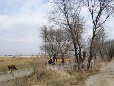 Участок 6 соток, Алматинская обл. за 3.3 млн 〒 — фото 3