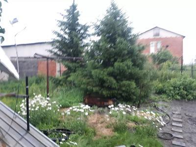 5-комнатный дом, 150 м², 13 сот., Станиславского .. за 17.5 млн 〒 в Усть-Каменогорске — фото 12