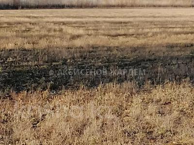 Участок 4.11 га, Междуреченск за 10.5 млн 〒