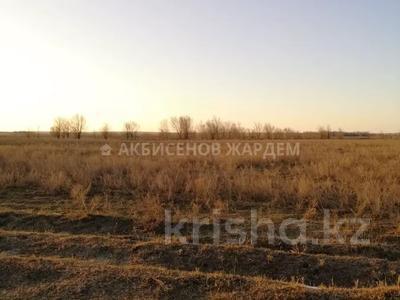 Участок 4.11 га, Междуреченск за 10.5 млн 〒 — фото 10