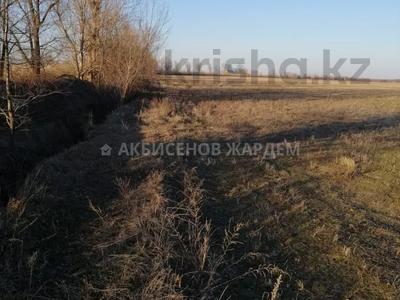 Участок 4.11 га, Междуреченск за 10.5 млн 〒 — фото 11