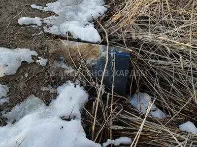 Участок 4.11 га, Междуреченск за 10.5 млн 〒 — фото 12