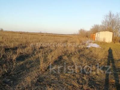 Участок 4.11 га, Междуреченск за 10.5 млн 〒 — фото 2