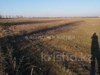 Участок 4.11 га, Междуреченск за 10.5 млн 〒 — фото 4