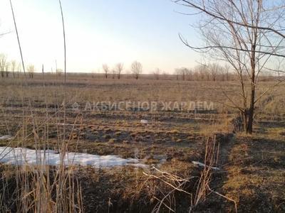 Участок 4.11 га, Междуреченск за 10.5 млн 〒 — фото 5