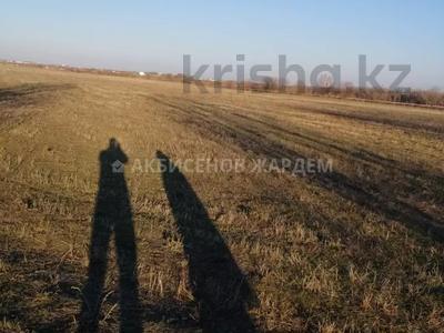 Участок 4.11 га, Междуреченск за 10.5 млн 〒 — фото 8