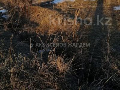 Участок 4.11 га, Междуреченск за 10.5 млн 〒 — фото 9
