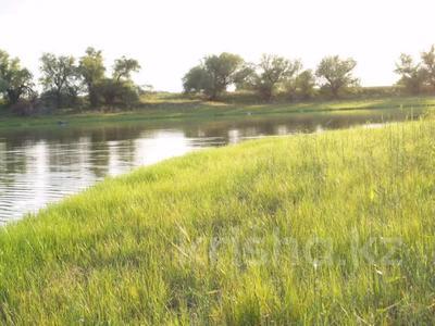 7-комнатный дом, 148.4 м², 300 сот., Елтай за 12.5 млн 〒 в Индер — фото 4