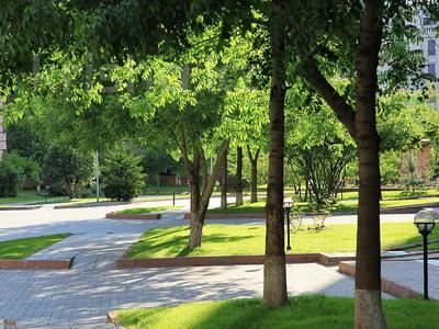 2-комнатная квартира, 85 м², 4/7 этаж, мкр Мирас, Аскарова Асанбая — Аль-Фараби за 59.9 млн 〒 в Алматы, Бостандыкский р-н — фото 9