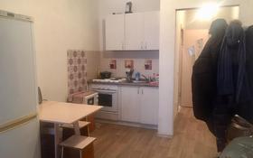 1-комнатная квартира, 28 м², 4/5 этаж, Майлина за ~ 9.3 млн 〒 в Нур-Султане (Астана)