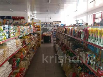 Магазин площадью 236.2 м², Балпык би 123 за 82 млн 〒 в Талдыкоргане — фото 10