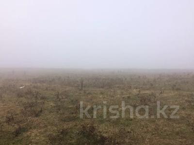 Участок 3 га, Ащибулак за ~ 15.3 млн 〒 — фото 12