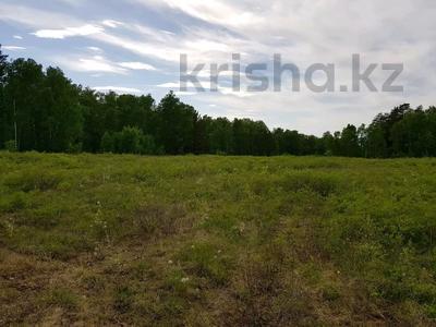 Участок 10 соток, Ак-каин 6 за 3.2 млн 〒 в Щучинске — фото 2