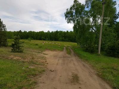 Участок 10 соток, Ак-каин 6 за 3.2 млн 〒 в Щучинске — фото 3