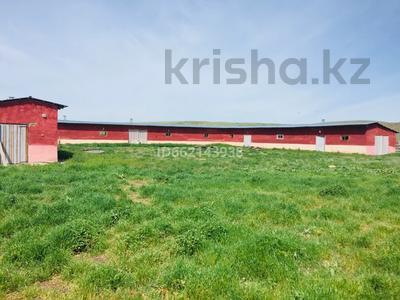 крестьянское хозяйство за 60 млн 〒 в Узынагаш — фото 2