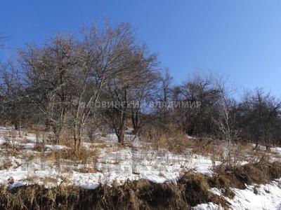 Участок 6 соток, Горный садовод за 3 млн 〒 в Алматы, Медеуский р-н