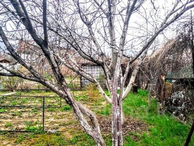 Дача с участком в 6 сот., Конаева 38 за 8 млн 〒 в в селе Шамалган — фото 15