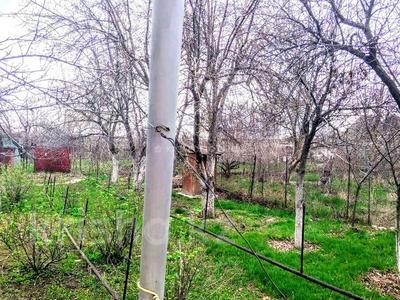 Дача с участком в 6 сот., Конаева 38 за 8 млн 〒 в в селе Шамалган — фото 16