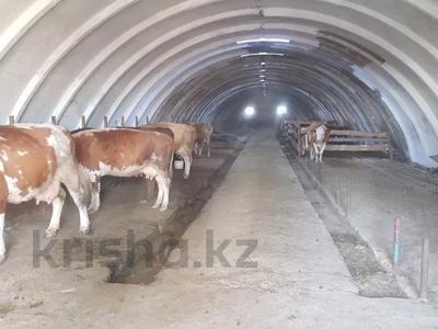 Промбаза 2 га, 026 1074 за 21 млн 〒 в Караганде — фото 3