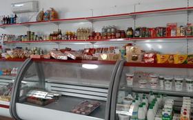 Кафе, магазин, тандырная за 85 млн 〒 в Каскелене