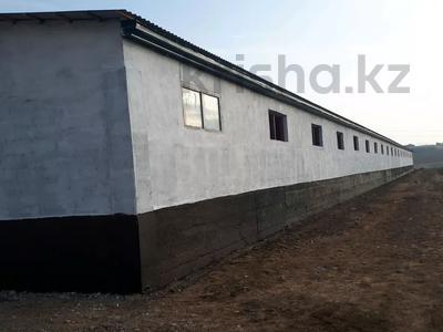 Участок 20 га, Балыкты за 15 млн 〒 в Туркестанской обл., Балыкты — фото 2