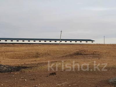 Участок 20 га, Балыкты за 15 млн 〒 в Туркестанской обл., Балыкты — фото 3