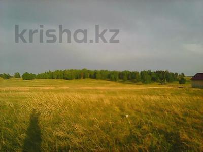 Участок 10 соток, Мол база 7 линия за 2 млн 〒 в Щучинске — фото 2