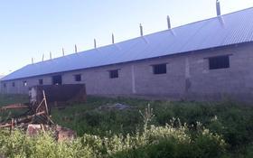 откорм за 5.5 млн 〒 в Узынагаш