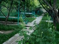кафе Райский сад за 440 млн 〒 в Шымкенте, Енбекшинский р-н