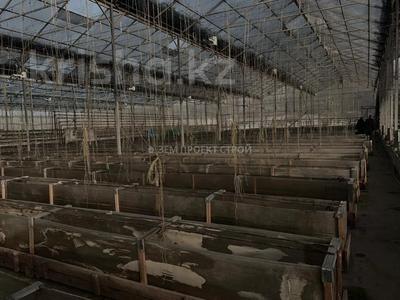 Тепличный комплекс за 105 млн 〒 в Туздыбастау (Калинино) — фото 16