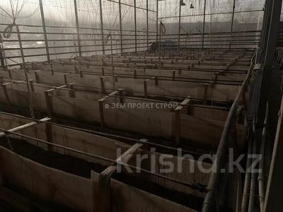 Тепличный комплекс за 105 млн 〒 в Туздыбастау (Калинино) — фото 17